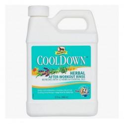 Absorbine Cool Down