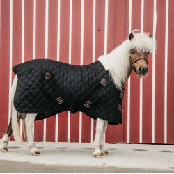 Stable Rug Pony