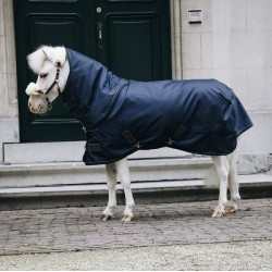 Turnout Rug All Weather...