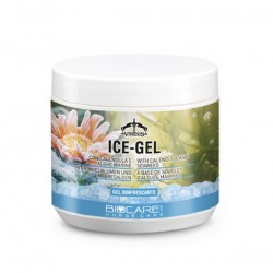Ice-Gel   500 ml